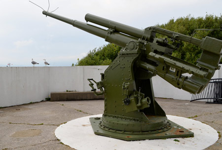 They have big guns everywhere. There is even a 100 Ton gun, made in Newcastle upon Tyne in 1870 and brought here by ship.