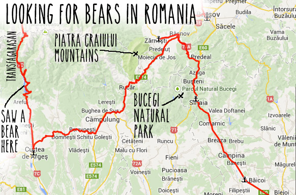 looking-for-bears-romania-map