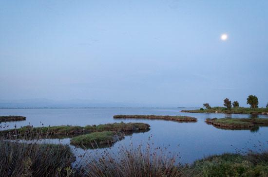 Ambracian-gulf-lagoon