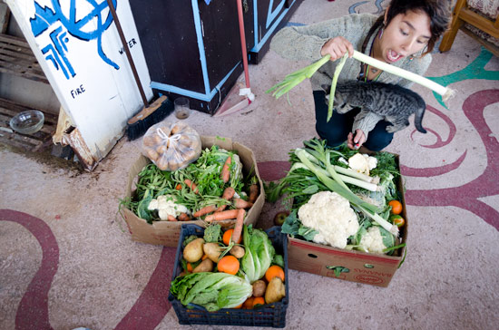 greece-in-a-campervan-food-mission