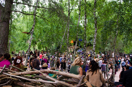 freqs-of-nature-festival-forrest