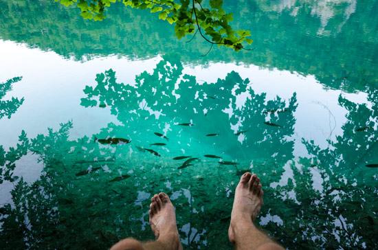 plitvicka-croatia-clear-water-fish
