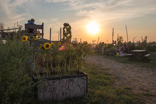 Tempelhof-airport-park-berlin-gardens