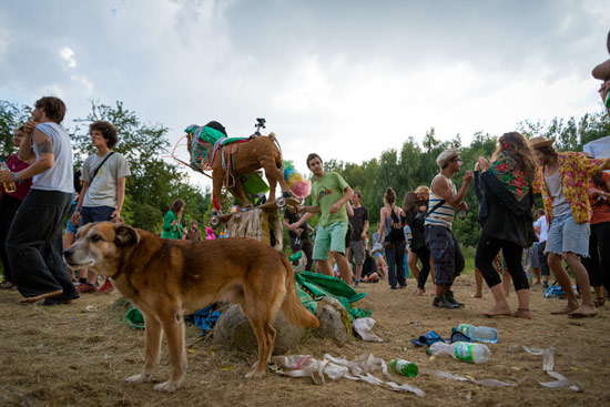 camp-tipsy-berlin-party-party-dog