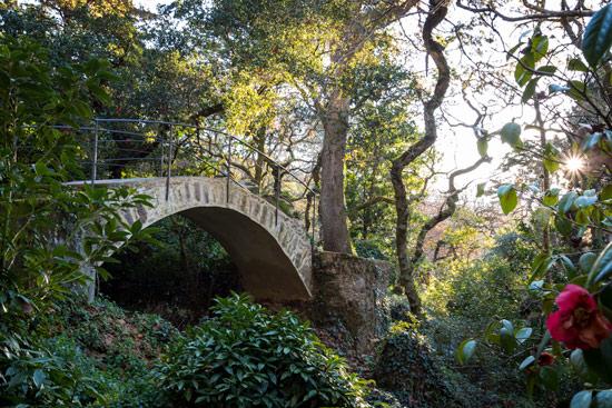 sintra-portugal-pena-garden-bridge-forest