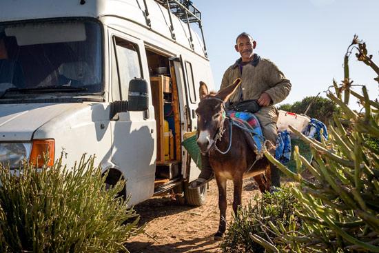 Morocco-by-campervan-sidi-kaouki-beach-donkey