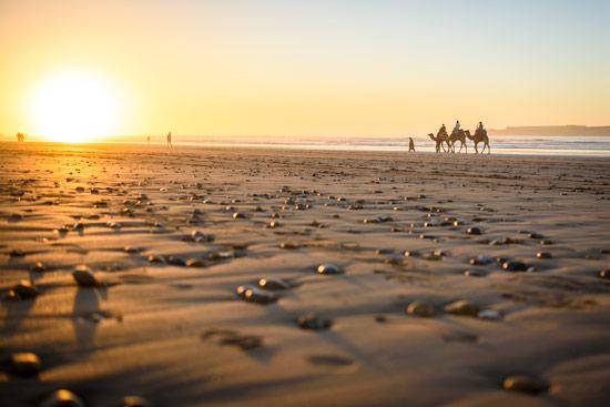 morocco-essaouira-campervan-beach-sunset