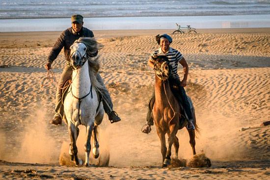 morocco-essaouira-campervan-horses-beach