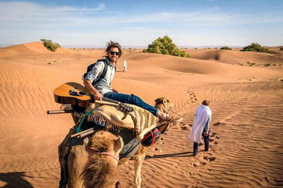 morocco-by-campervan-sahara-desert-camel